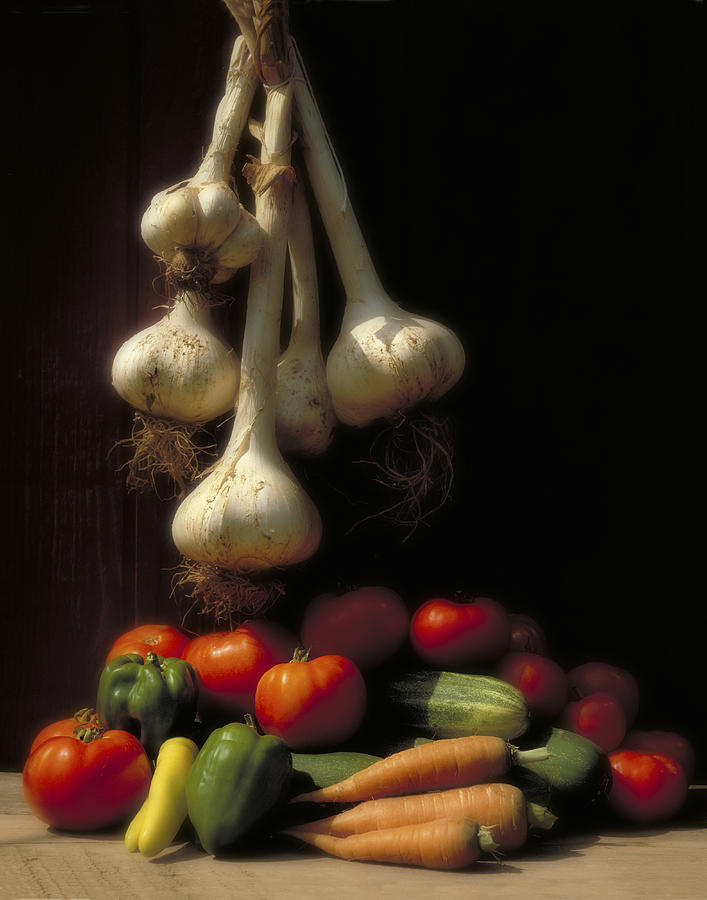 Tomatoes Photograph - Summer Harvest by Garry McMichael