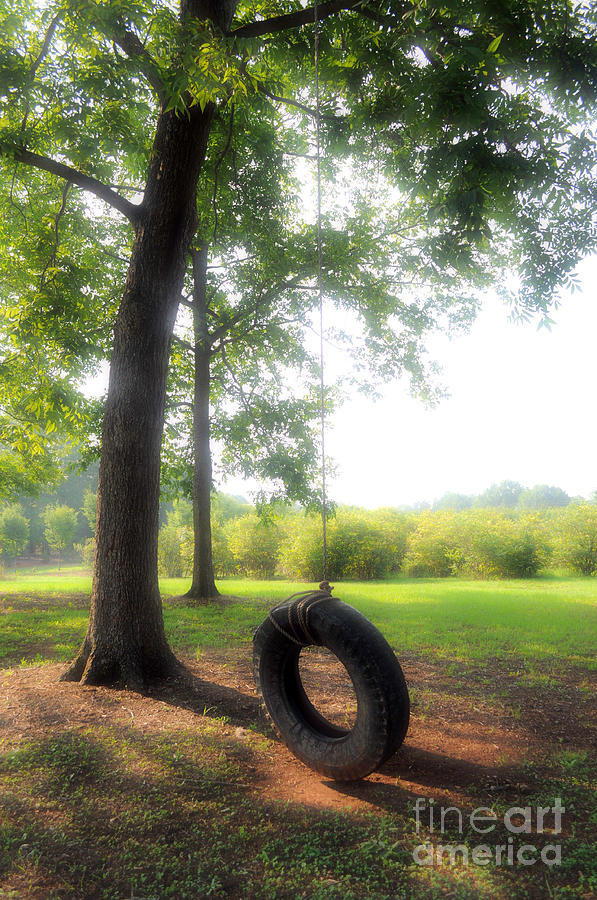 Tire Photograph - Summer Haze by Catherine Jarret