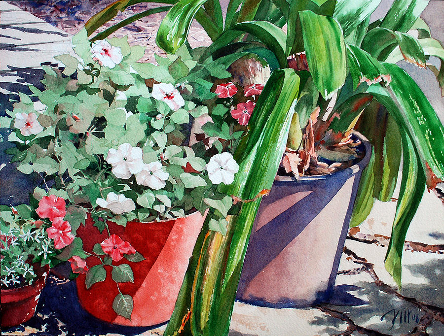Peter Sit Watercolor Painting - Summer Impatiens by Peter Sit