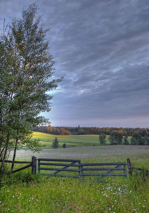 Landscape Photograph - Summer Pasture by Heather  Rivet