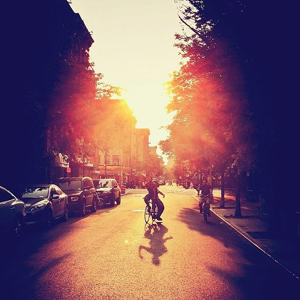 New York City Photograph - Summer Sunlight - Lower East Side - New York City by Vivienne Gucwa