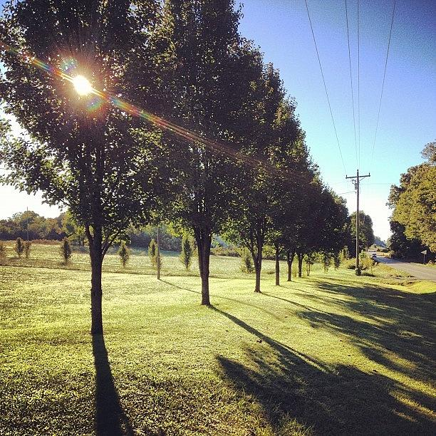 Summer Photograph - Sun And Shadows Intertwine Like Two by Amber Flowers