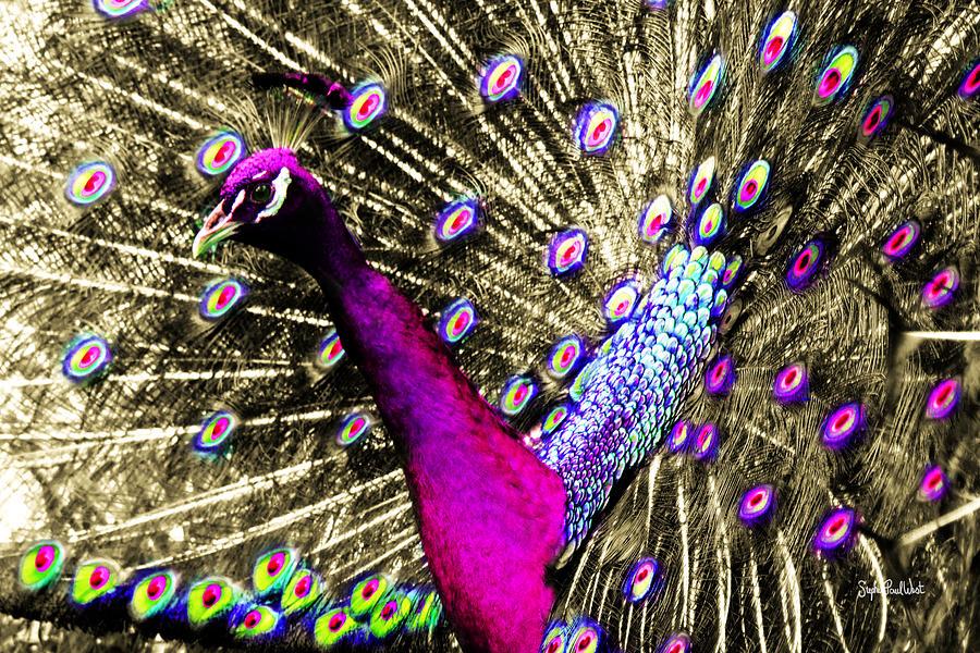 Sun Photograph - Sun Beam Peacock by Stephen Paul West