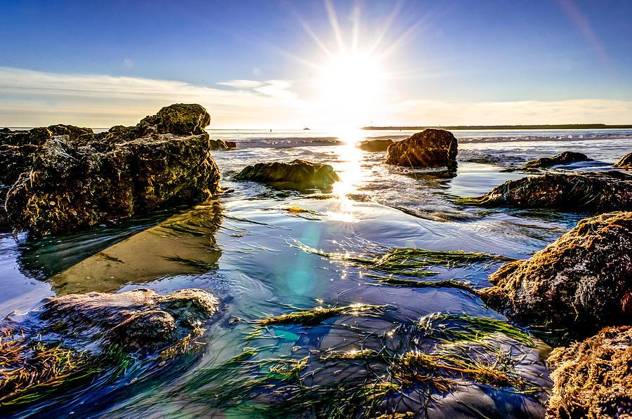 Sun Photograph - Sun Flare by Brian Leon