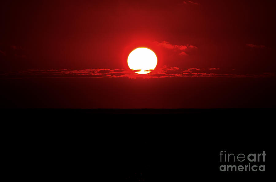 Sun Digital Art - Sun by Pravine Chester