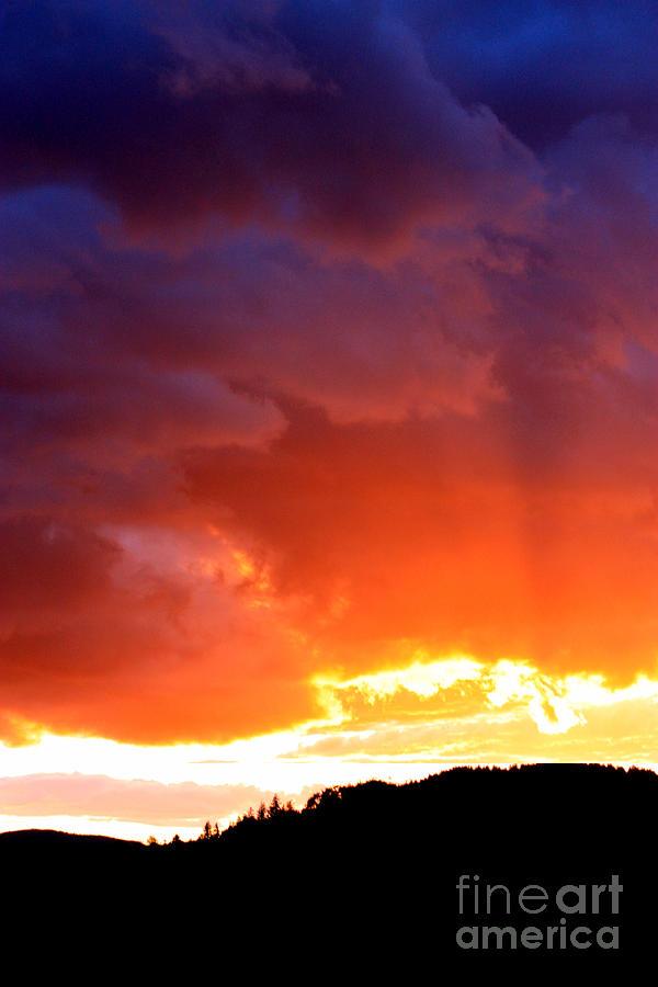 Sun Rays Photograph - Sun Rays by Nick Gustafson