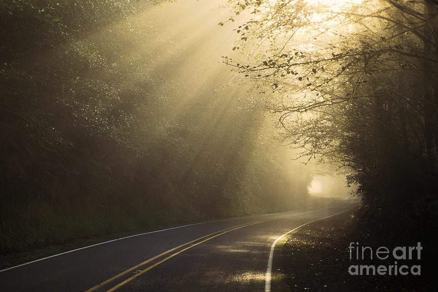 Landscape Photograph - Sun Rays On Road by Ron Sanford and Photo Researchers