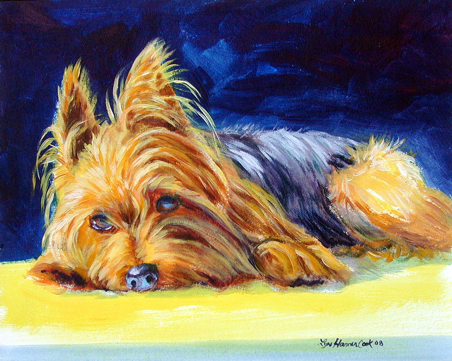 Sun Spot Yorkshire Terrier Painting By Lyn Cook