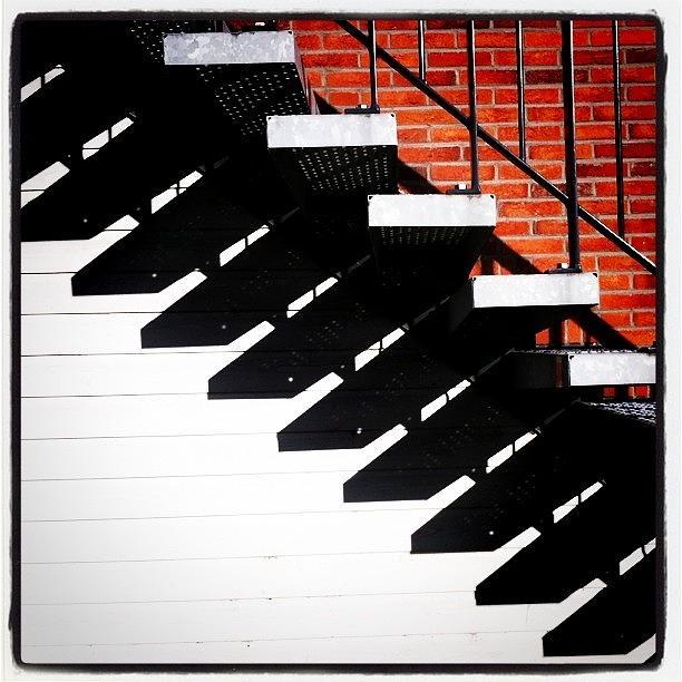 Sun Photograph - #sun #stairs #shadow #lines by Robbert Ter Weijden