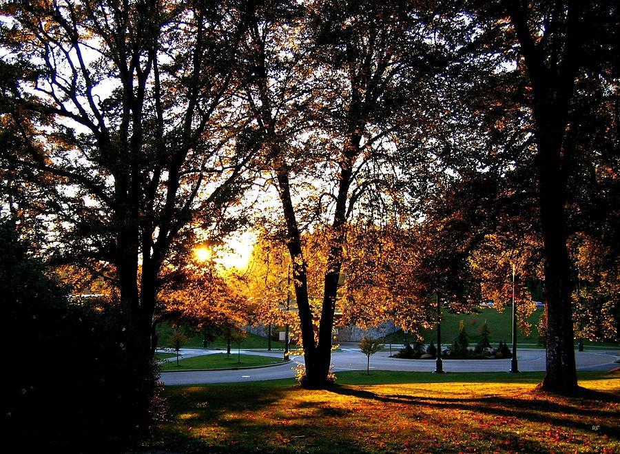Stanley Park Photograph - Sundown In Stanley Park by Will Borden
