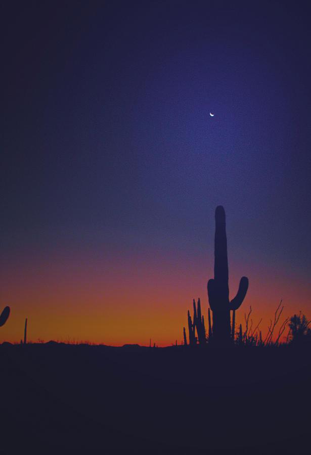 Sunset Photograph - Sundown On The Desert 7746 by J D  Whaley