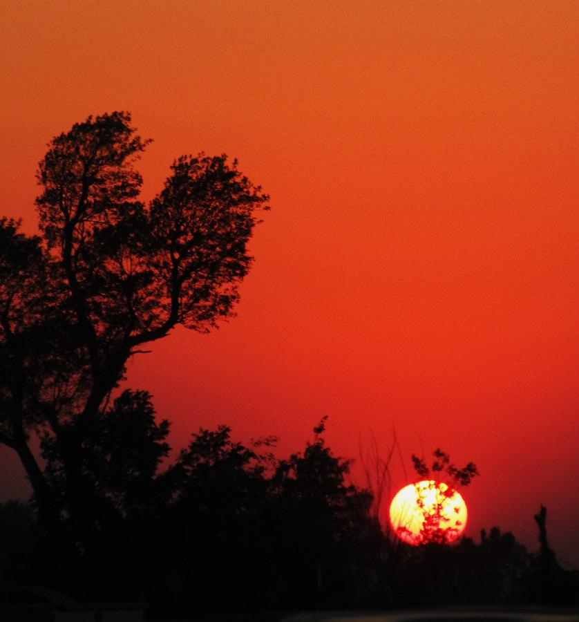Sundown Photograph by Todd Sherlock