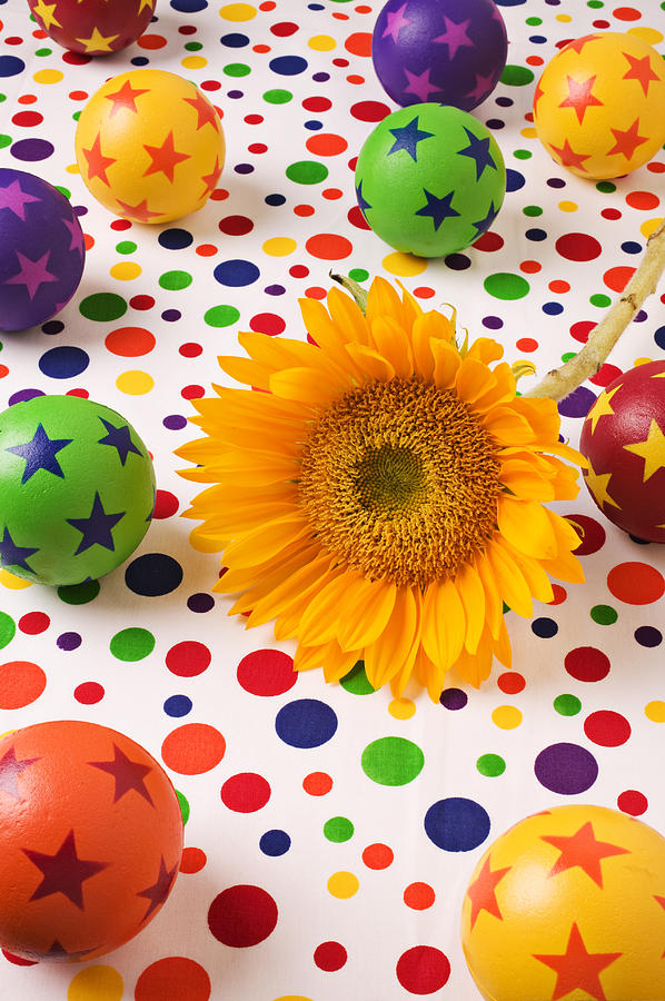 Sunflower Photograph - Sunflower And Colorful Balls by Garry Gay
