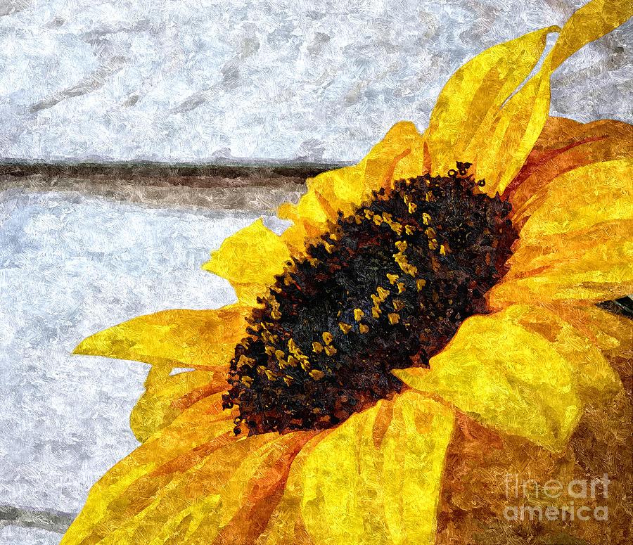 Yellow Photograph - Sunflower Paint by Slavi Begov