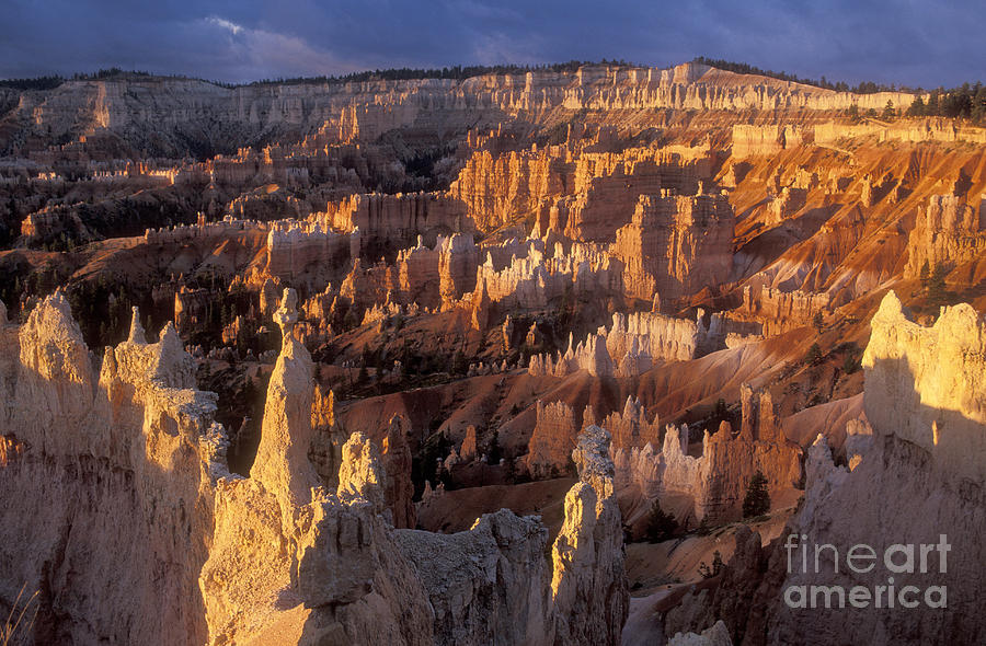 Bronstein Photograph - Sunrise At Brice Canyon Amphitheatre by Sandra Bronstein