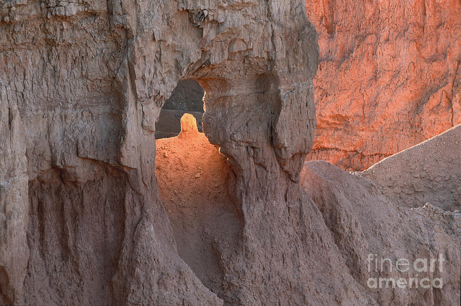 Bronstein Photograph - Sunrise Detail Bryce Canyon by Sandra Bronstein