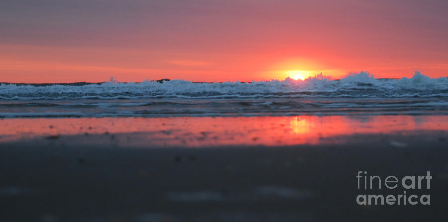Corolla Photograph - Sunrise From The Sand by Linda Mesibov