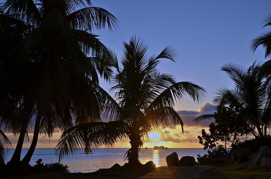 Landscape Photograph - Sunrise In Paradise by Nancy Rohrig