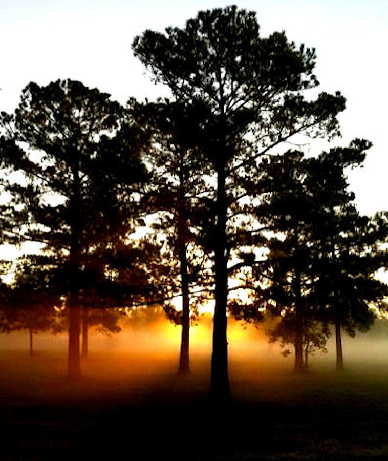 Sunrise Photograph - Sunrise3 by Amber Stubbs