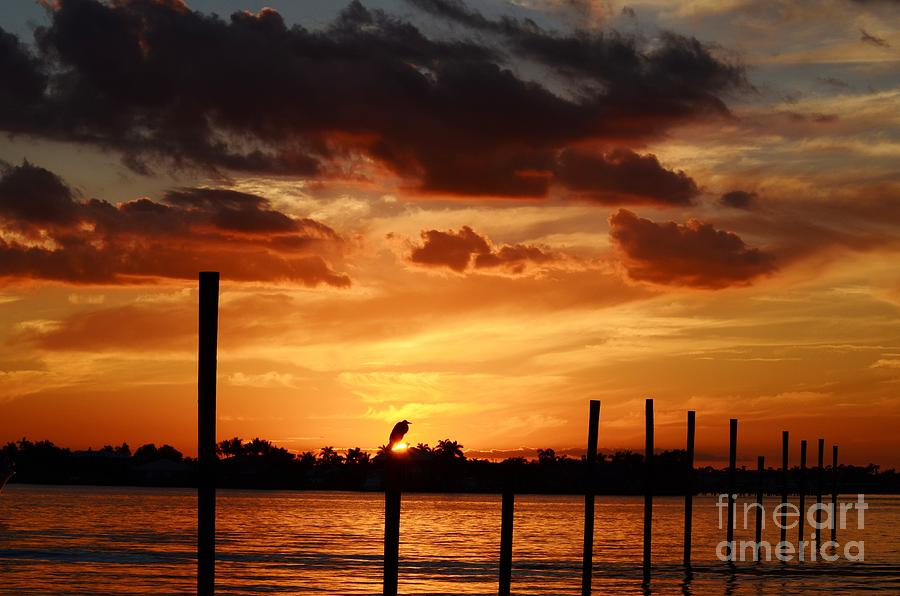 Sunset Photograph - Sunset 1-1-12 by Lynda Dawson-Youngclaus