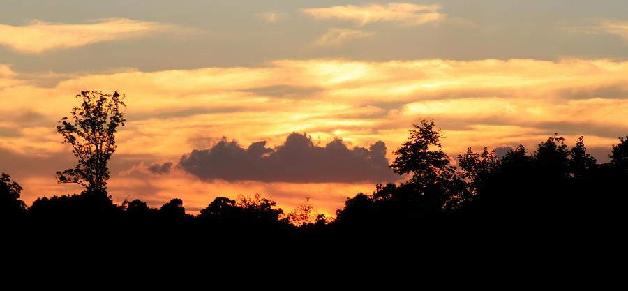 Sunset Photograph - Sunset 1 by Veronica Ventress
