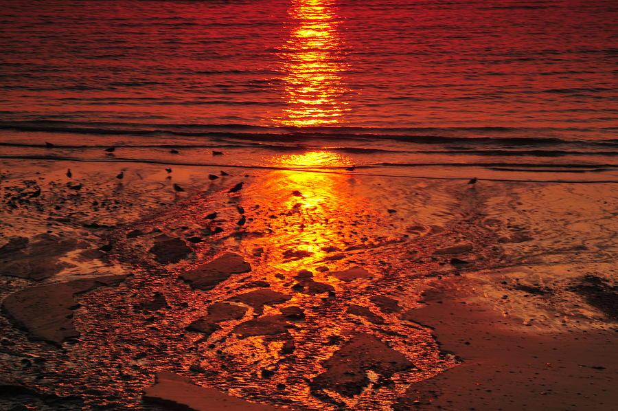 Sunset Photograph - Sunset 4 by Jenny Potter