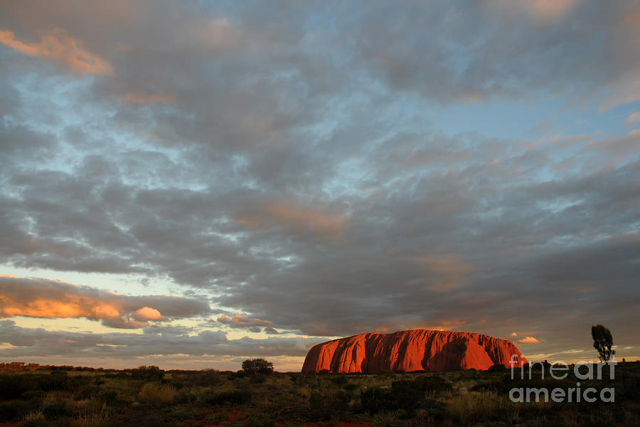 Sandstone Photograph - Sunset At Uluru by Vivian Christopher