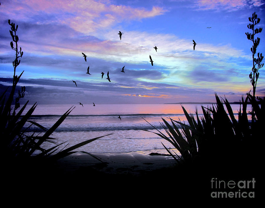 Sunset Photograph - Sunset Down Under by Karen Lewis