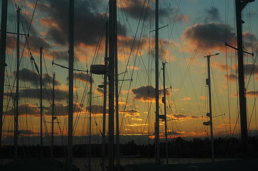Sunset Photograph - Sunset Harbor by Rafael Figueroa