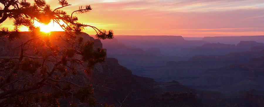 Landscape Photograph - Sunset In Grand Canyon by Olga Vlasenko
