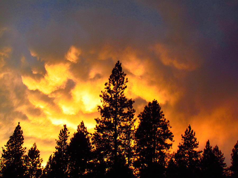 Photograph - Sunset by Lily Easter-Thomas