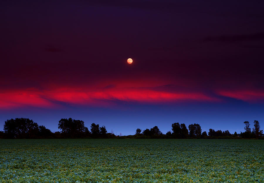 Sunset Moon Photograph
