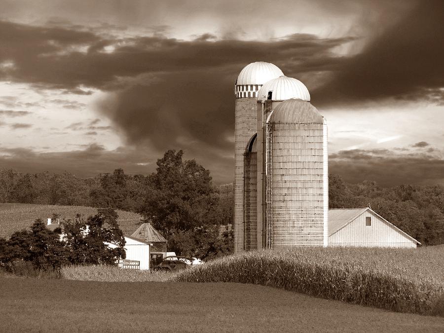 Farm Photograph - Sunset On The Farm S by David Dehner