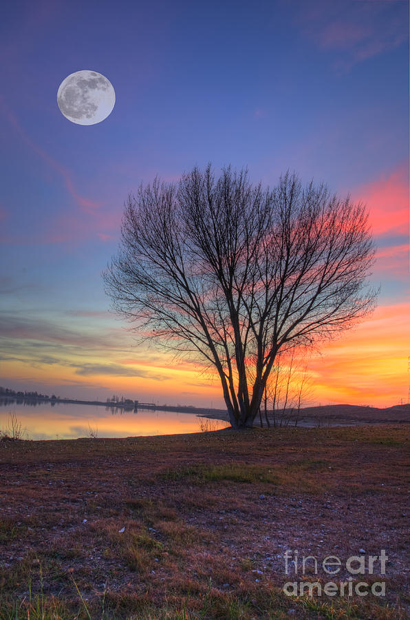 Lake Photograph - Sunset Over The Lake by Jim And Emily Bush