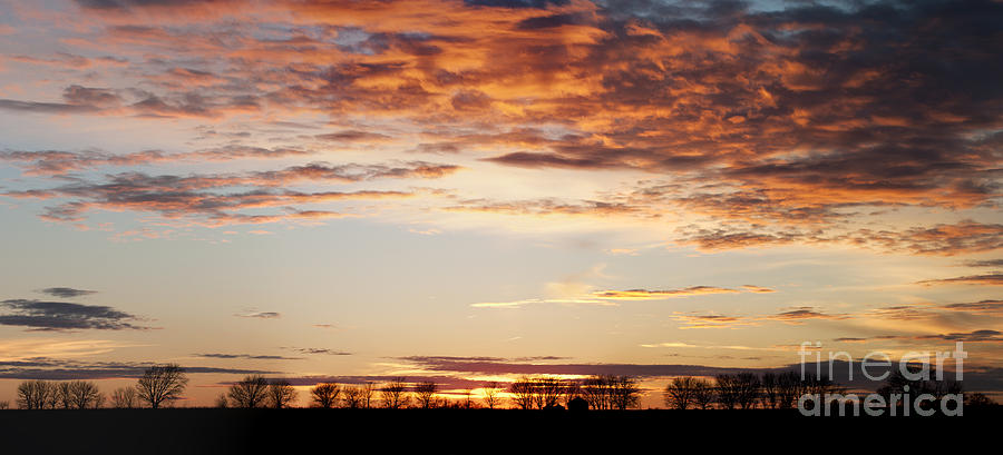 Prairie Sunset Photograph - Sunset Over The Tree Line by Art Whitton