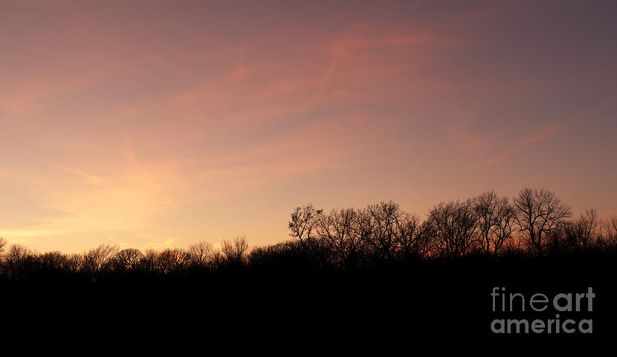 Prairie Sunset Photograph - Sunset Over Trees by Art Whitton