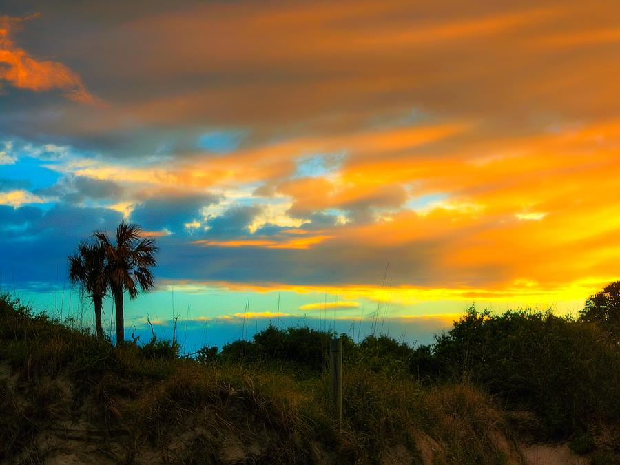 Sunset Palm Folly Beach  Photograph by Jenny Ellen Photography