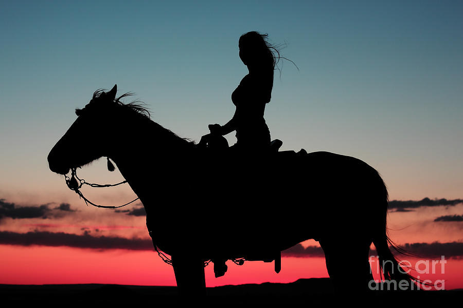 Nature Photograph - Sunset Ride by Val Armstrong
