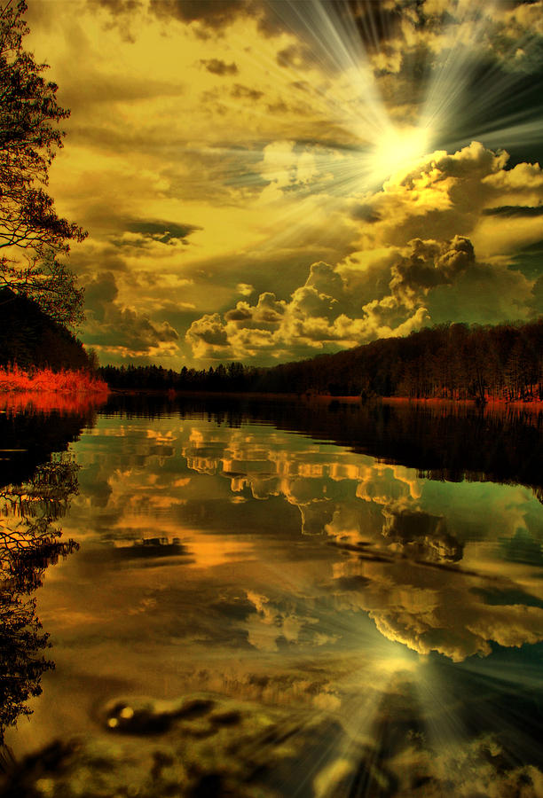 Sunset Photograph - Sunset Shine by Emily Stauring