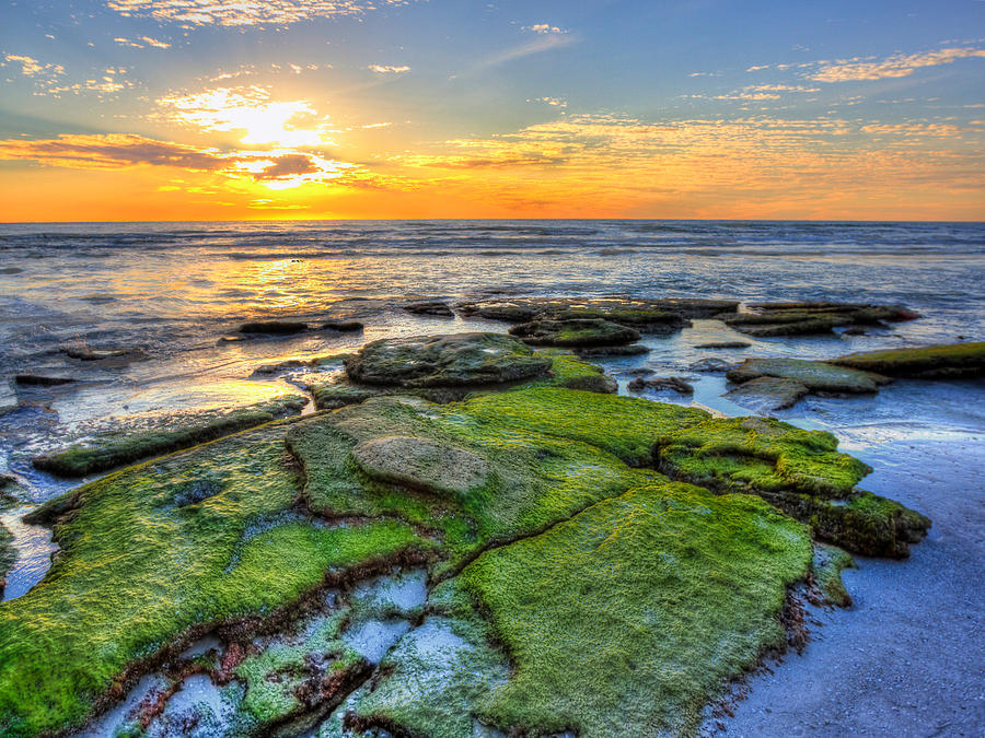 Sunset Siesta Key Rocks Photograph by Jenny Ellen Photography