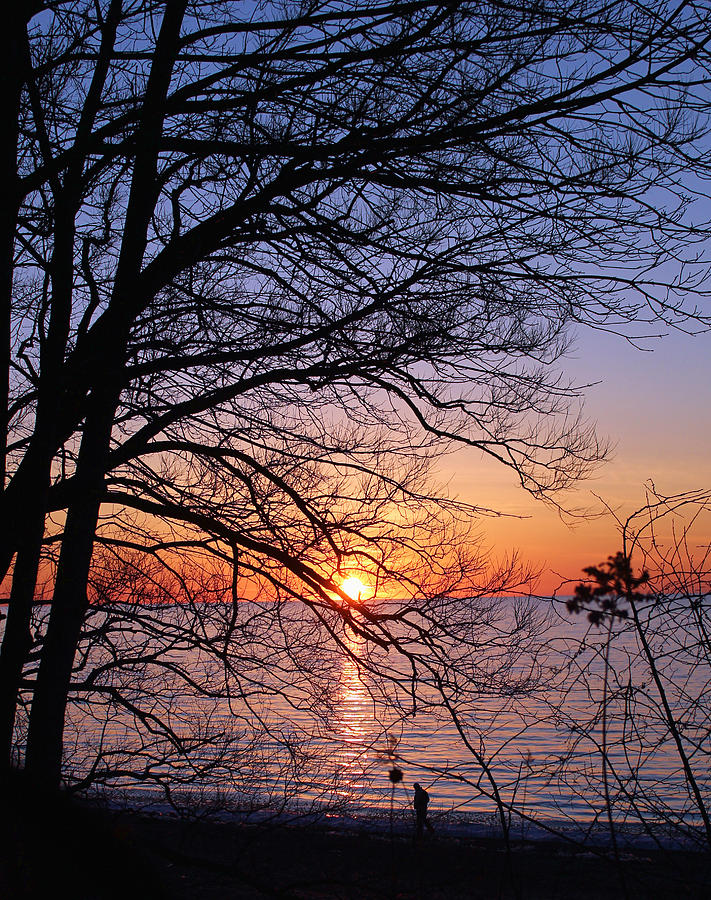 Sunset Photograph - Sunset Silhouette 1 by Peter Chilelli