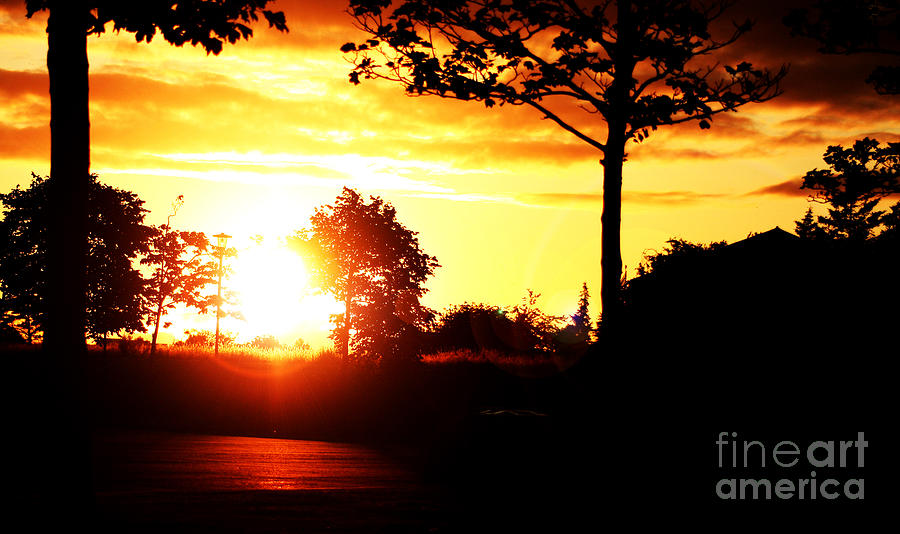 Scenic Photograph - Sunset Soon by Alexander Photography