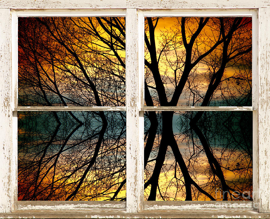 Colorful Photograph - Sunset Tree Silhouette Abstract Picture Window View by James BO  Insogna