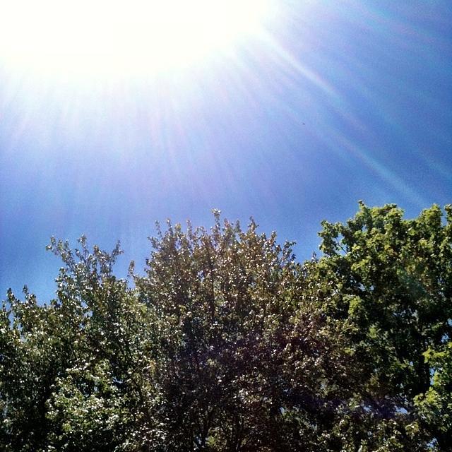 Sky Photograph - Sunshine by Dana Vogel