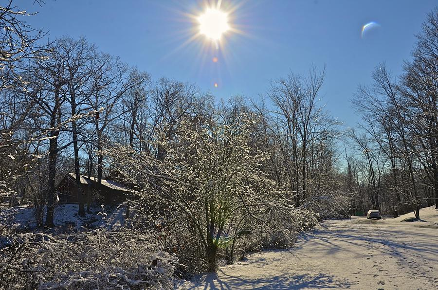 Winter Photograph - Sunshine In The Snow by Nancy Rohrig