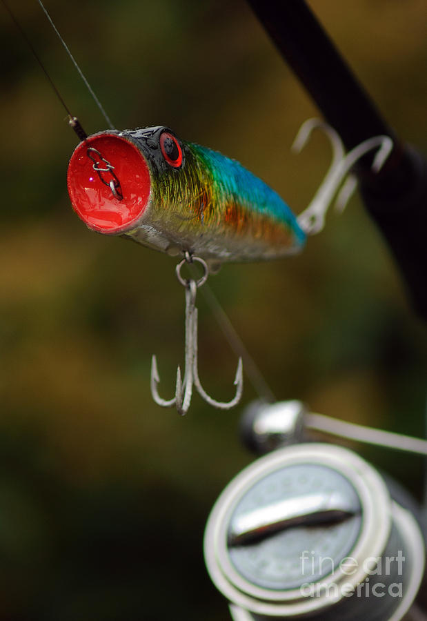 Pike Photograph - Surface Lure by Paul Holman