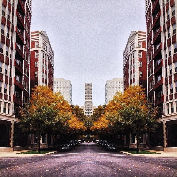 Fall Photograph - Surreal Life #fall by Ramon Smikle