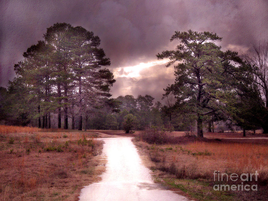 Fall In South Carolina Photograph - Surreal Pink Landscape With Purple Sunset by Kathy Fornal