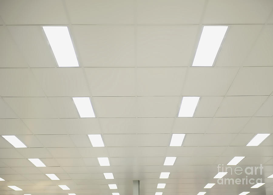 Ceiling Photograph   Suspended Ceiling Lights By Dave U0026 Les Jacobs