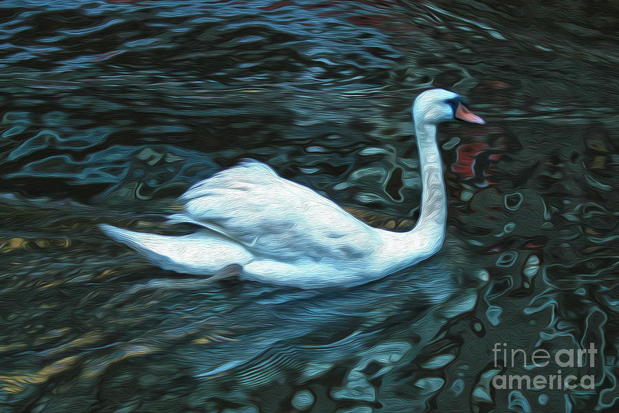 Swan Painting - Swan by Gregory Dyer
